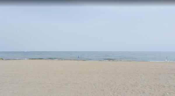 Playa de Rumina y el Palmeral