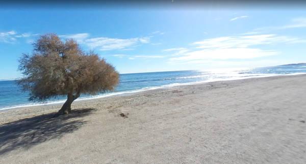 Playa Los Bajos