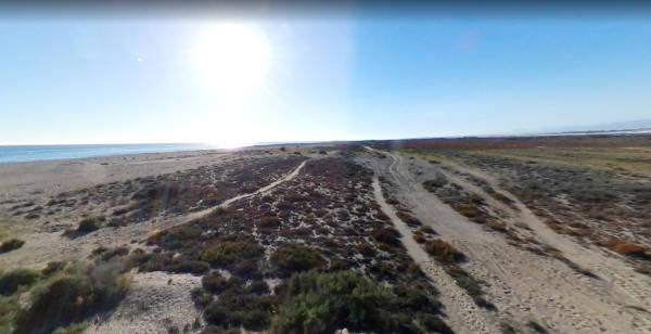 Playa de Cerrillos